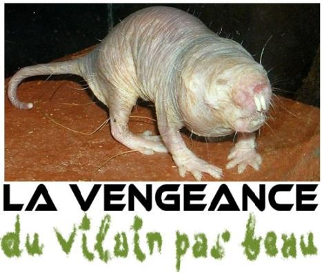 vengeance-du-vilain